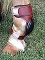 Skiddy 242990-2T.jpg