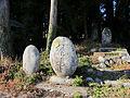 Small shrines of Sakamine-jinja shrine in Kashima ward.JPG