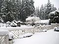 SnowstormOnDeck.JPG