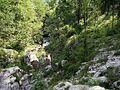 Soča - panoramio (13).jpg