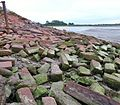 Solway Viaduct and the spread of red sandstone blocks on the embankment - Bowness-on-Solway, Cumbria.jpg