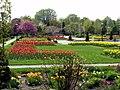 Spring bulbs in Jackson Park (4546950338).jpg