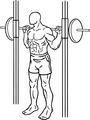 Squats-2-1.png