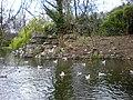 St. Stephen's Green Lake, Dublin-4548752309.jpg