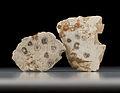 StadtmuseumBerlin GeologischeSammlung SM-2012-2841-1-2 MichaelSetzpfandt.jpg