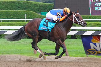 Stay Thirsty - Stay Thirsty with Javier Castellano up winning the 2011 Travers Stakes.