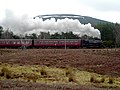 Steam Train Travelling from Aviemore to Boat of Garten - geograph.org.uk - 764414.jpg
