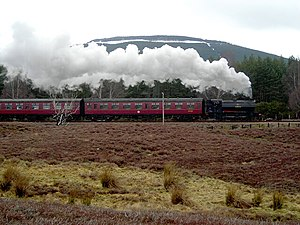 Steam Train Travelling from Aviemore to Boat o...