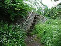 Steps - geograph.org.uk - 827382.jpg