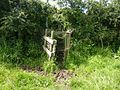 Stile onto Trevega Wartha bridalpath. - panoramio.jpg