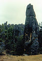 Stone forest 1983-13.jpg