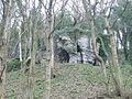 Strange rock outcrop, Pant y Coed - geograph.org.uk - 671389.jpg
