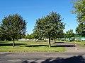 Struppener Straße, Pirna DSC06633.jpg