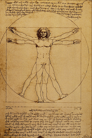 Studio del Corpo Umano - Leonardo da Vinci