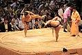 Sumo tournament (15715079492).jpg