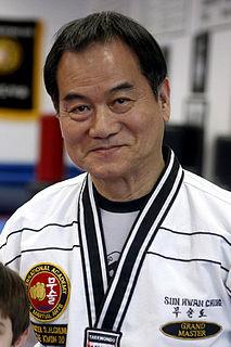 South Korean martial artist
