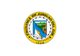 Vlag van Surigao del Sur