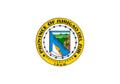 Surigao del Sur Flag.png