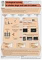 Survey Lisbon poster ESVV09.jpg