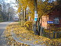 Szymanowice autumn.jpg