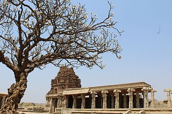 Temple in Humpi.jpg