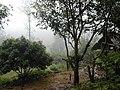 Thailand Jungle Village.jpg