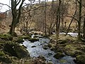 The River Carron - geograph.org.uk - 1770148.jpg