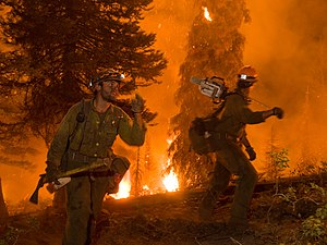 The Springs Fire, Banks-Garden Valley, Idaho, Boise National Forest, August, 2012.jpg