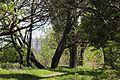 The Sunny island Park - panoramio (1).jpg