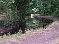 The Tavistock Canal - geograph.org.uk - 332566.jpg