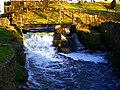 The Wild End Of The Weir - panoramio.jpg