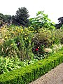 The kitchen garden - one of the herbaceous borders - geograph.org.uk - 935410.jpg