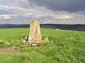 The triangulation pillar on Greena Hill - geograph.org.uk - 520878.jpg