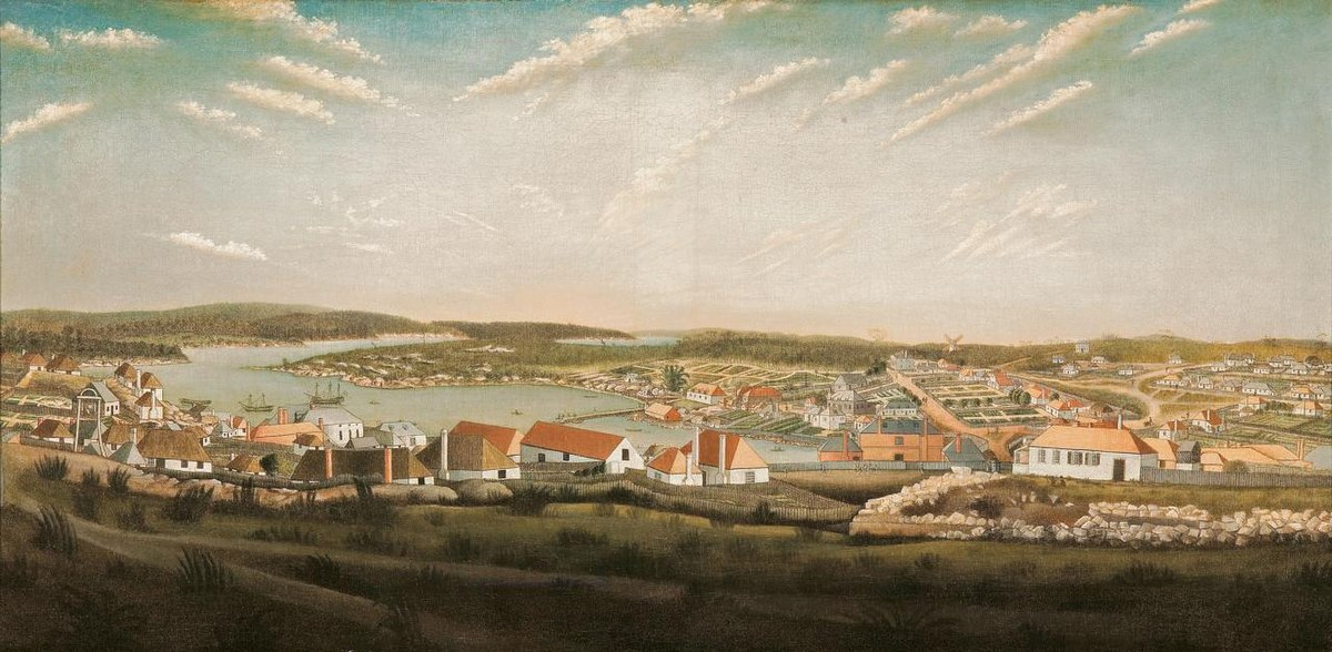 Thomas Watling View of Sydney.jpg