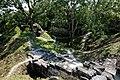 Tikal 2-19 (33446445045).jpg