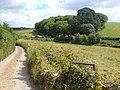 Timber yard near East Allington - geograph.org.uk - 210438.jpg