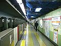 TokyoMetro-M10-Shinjuku-gyoemmae-station-platform.jpg