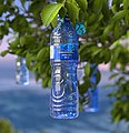 Top Bottled Water.jpg