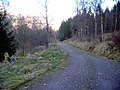 Track Near Invertrossachs - geograph.org.uk - 736291.jpg