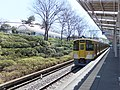 Trains at Seibu-kyujomae Station 20160322.jpg