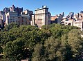 Treetops of Union Square 2014.jpeg