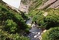 Trentishoe, River Heddon - geograph.org.uk - 86261.jpg