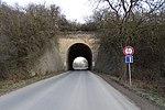 Trněný Újezd, silnice 10122, most bývalé vlečky (03).jpg