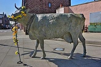 Turriff - Statue commemorating the Turra Coo