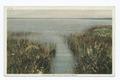 Twilight, Nantucket Island, Mass (NYPL b12647398-74632).tiff