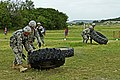 U.S. Soldiers assigned to Bravo Troop, 1st Squadron, 7th Cavalry Regiment, 1st Brigade Combat Team, 1st Cavalry Division, flip tires between firing stations during a stress under fire simulation of the fifth 130723-A-HL390-202.jpg