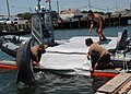 US Navy 100607-N-9806M-086 Sailors work with a bottlenose dolphin at Joint Expeditionary Base Little Creek-Fort Story during Frontier Sentinel 2010.jpg