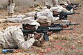 US Navy 100817-N-9123L-090 Reserve Component Sailors assigned to Maritime Expeditionary Security Squadron (MSRON) 1 fire M-4 carbines.jpg