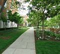 UU Rutgers University pathway College Avenue campus.JPG