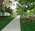 UU Rutgers University pathway College Avenue campus.JPG